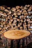 Stumpf im Hintergrund des Birkenholzes Lizenzfreies Stockbild