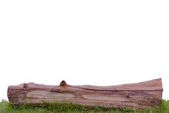 Stumps and grass. Stock Photos