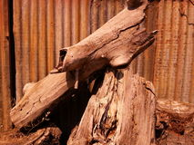 Stumps Royalty Free Stock Photography