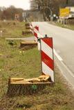 Stumps le bord de la route Photos stock