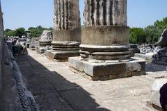 Stumps of massive stone columns of the Apollo temple  at Didyma, Stock Photos