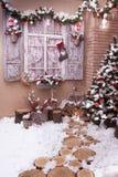 Stumps path leeds to Christmas tree Stock Images