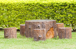 Stumps seats in the garden Royalty Free Stock Photo