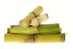 Stumps Of Sugarcane Stock Photos