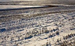 Stunden und Landschaft foto Lizenzfreies Stockbild