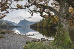 Stuning Autumn Fall landskapbild av sjön Buttermere i sjö D arkivbild