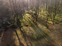 Free Stunning Abstract Aerial Drone Landscape Image Of Early Morning Shadows Through Trees In Forest In The Peak District In England Royalty Free Stock Image - 140788966