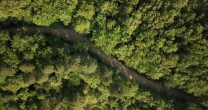 Russian Forest And Mountains Under Blue Sky By Aerial Drone. Stunning Aerial Drone Stock Footage of South russian Forest And Mountains Under Blue Sky stock footage