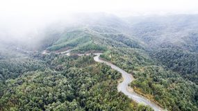 Stunning aerial of a foggy forest New Zealand. A stunning drone shot of a foggy forrest New Zealand. Made during the best road trip ever, the landscape keeps on stock photos