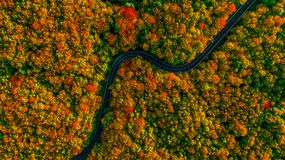 Stunning aerial view of road with curves crossing dense forest i. N autumn colors Stock Images