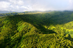 Stunning aerial view of spectacular jungles, Kauai Stock Photo