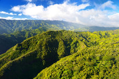 Stunning aerial view of spectacular jungles, Kauai Royalty Free Stock Photo