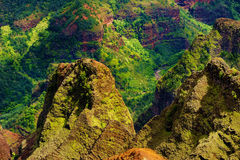 Stunning aerial view into Waimea Canyon Stock Images