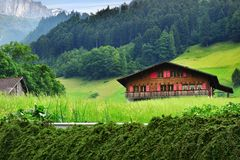 Stunning alpine landscape in canton Uri, Switzerland. Beautiful view of idyllic mountain scenery in the Alps with traditional chalet in green alpine meadows in Stock Image