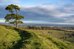 Stunning Autumn morning view over countryside landscape Royalty Free Stock Images