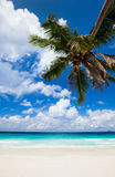 Stunning beach in Seychelles Royalty Free Stock Image