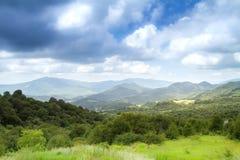 Stunning beautiful bright summer landscape Stock Photos