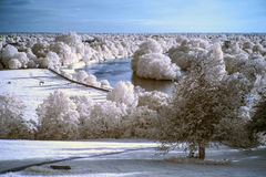 Stunning beautiful unique infra red landscape with false color Stock Photos