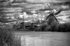 Stunning black and white landscape, windmills. Windmills in netherland, kinderdijk, black and white. cloudy sky Stock Images