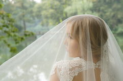 Stunning blond  bride under a white lacy wedding veil Stock Photos