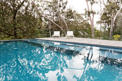 Stunning blue tiled infinity swimming pool in Australian bush se Royalty Free Stock Photos