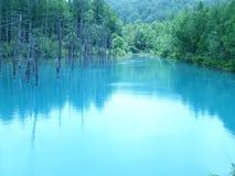 Stunning blue water of Blue Pond or Shirogane Aoi Ike in Biei, Hokkaido. Japan royalty free stock image
