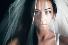 Stunning bride with black hair looks hidden under a veil stock photo