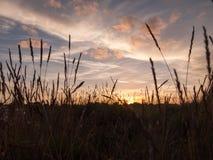 Stunning bright autumn harvest sun set scene over lake water ref Stock Image