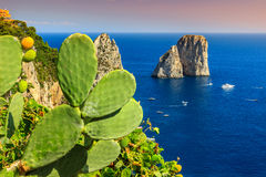 Stunning Capri island with Faraglioni cliffs,Italy,Europe Royalty Free Stock Photo