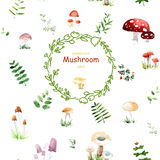 Stunning card with cute mushrooms and leafs made in watercolor technique. Stock Photos
