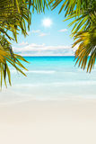 Stunning Caribbean beach with transparent water Royalty Free Stock Photos