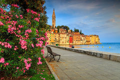 Stunning cityscape with Rovinj old town,Istria region,Croatia,Europe Royalty Free Stock Photos