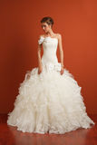 Stunning classical bride Stock Image