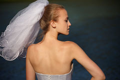 Brides profile Royalty Free Stock Photos