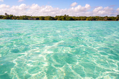 Stunning Clear Caribbean Sea in Mexico. Caribbean Sea and coast in the Sian Kaan Biosphere Reserve near Tulum, Mexico Stock Photos