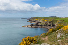 Stunning Coast Wales. Wales Coast Path Pembrokeshire UK near from Caerfai bay to St Non`s bay in the Coast National Park towards Ramsey Island.   Follows the Stock Image