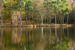 Stunning colorful Autumn Fall lake scene Royalty Free Stock Photos