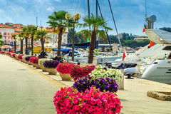 Stunning colorful flowers and promenade,Porec,Istria region,Croatia,Europe. Beautiful spectacular walkway with luxury harbor on the Adriatic Sea,Porec,Istria Royalty Free Stock Images