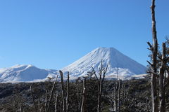 Stunning cone of Ruapehu volcano and Tongariro volcano in winter. Stunning Ruapehu volcano whole under snow in winter time during beautiful sunny day in Royalty Free Stock Image