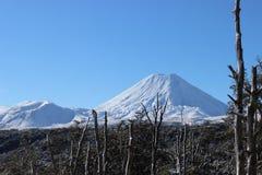 Stunning cone of Ruapehu volcano and Tongariro volcano in winter Royalty Free Stock Image