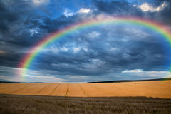 Stunning Countryside Landscape Wheat Field With Rainbow In Summer Sunset Stock Image