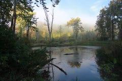 Stunning Cuyahoga Dolinny park narodowy w spadku ranku słońcu OHIO - BRECKSVILLE - fotografia stock