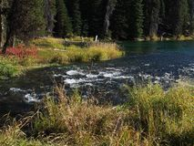 Stunning Deschutes River waters. The beautiful waters of the Deschutes River in the forests of Oregon stock photos