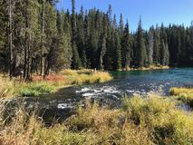 Stunning Deschutes River waters. The beautiful waters of the Deschutes River in the forests of Oregon stock image