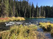 Stunning Deschutes River waters. The beautiful waters of the Deschutes River in the forests of Oregon royalty free stock images
