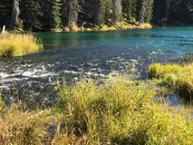 Stunning Deschutes River waters. The beautiful waters of the Deschutes River in the forests of Oregon royalty free stock photo