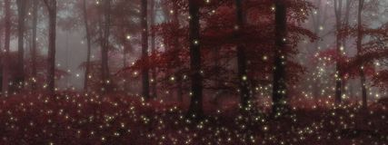 Stunning fantasy style landscape image of fireflies in night tim stock images