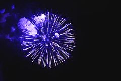 Stunning fireworks blue flowers on the night sky. Brightly firew royalty free stock photography