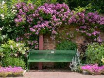 Stunning flowers at Eastcote House Gardens walled garden, London UK.