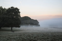 Stunning foggy Autumn Fall sunrise landscape over frost covered Royalty Free Stock Images